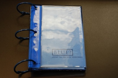 Blue Book - Sarah Stengle